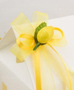 applicazione limone