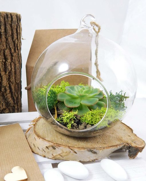 bolla vetro portapianta con piantina verde legambiente