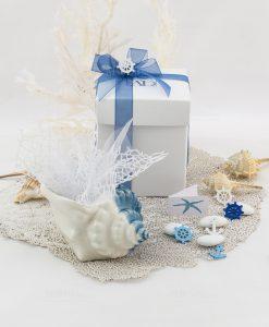 bomboniera basic svuotatasche conchiglia piccola con scatola sacchetto e nastri linea oceano ad emozioni