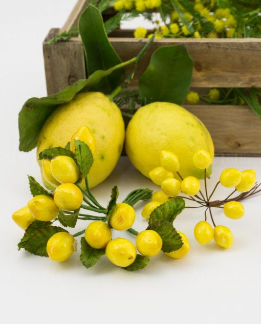 mazzolino limoni grande e mazzolino limoni piccolo