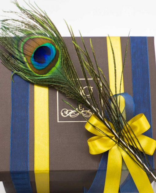 scatola con doppi nastri blu e gialli e piuma pavone art collection emò