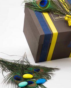 scatola marrone art collection emò con doppi nastri e piuma