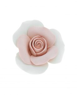 rosa con petali rosa pesca e bianco