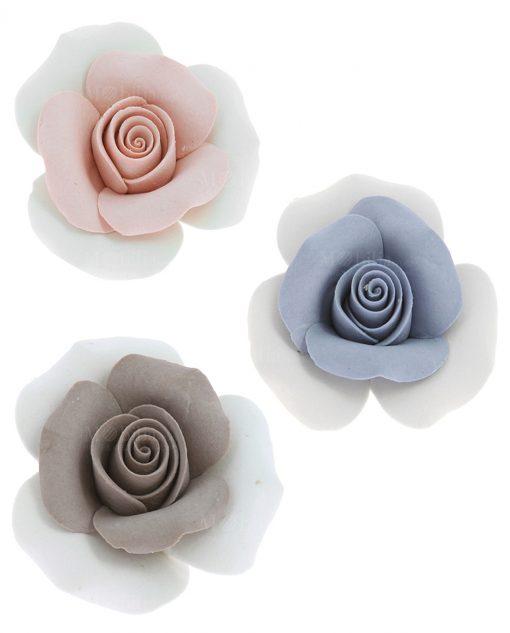 rosa con petali tortora blu e rosa pesca