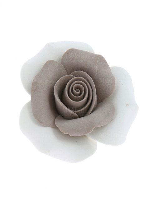 rosa con petali tortora e bianco
