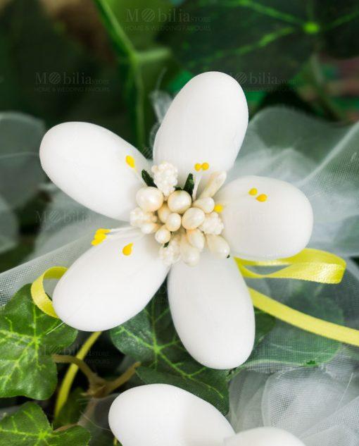 fiore di sulmona bianco con nastro raso giallo