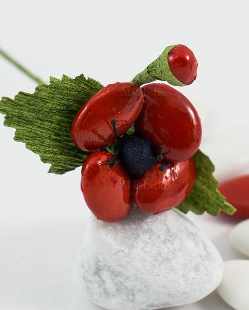 fiore di sulmona papavero rosso