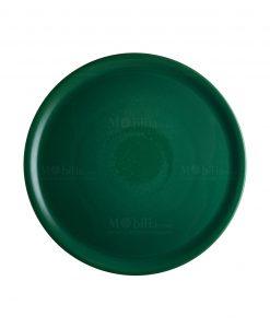 piatto porcellana verde per pizza brandani