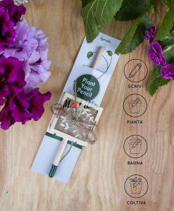 matita da piantare con scatolina