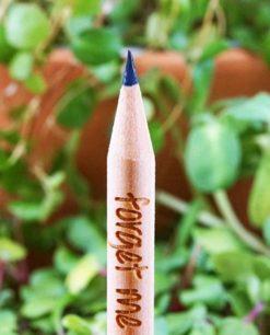matita da piantare semi non ti scordar di me