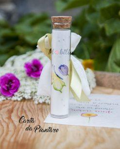 tubicino con carta da piantare farfalla verde