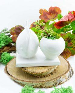 scultura-balena-porcellana-bianca-con-pianta-grassa-paola-rolando